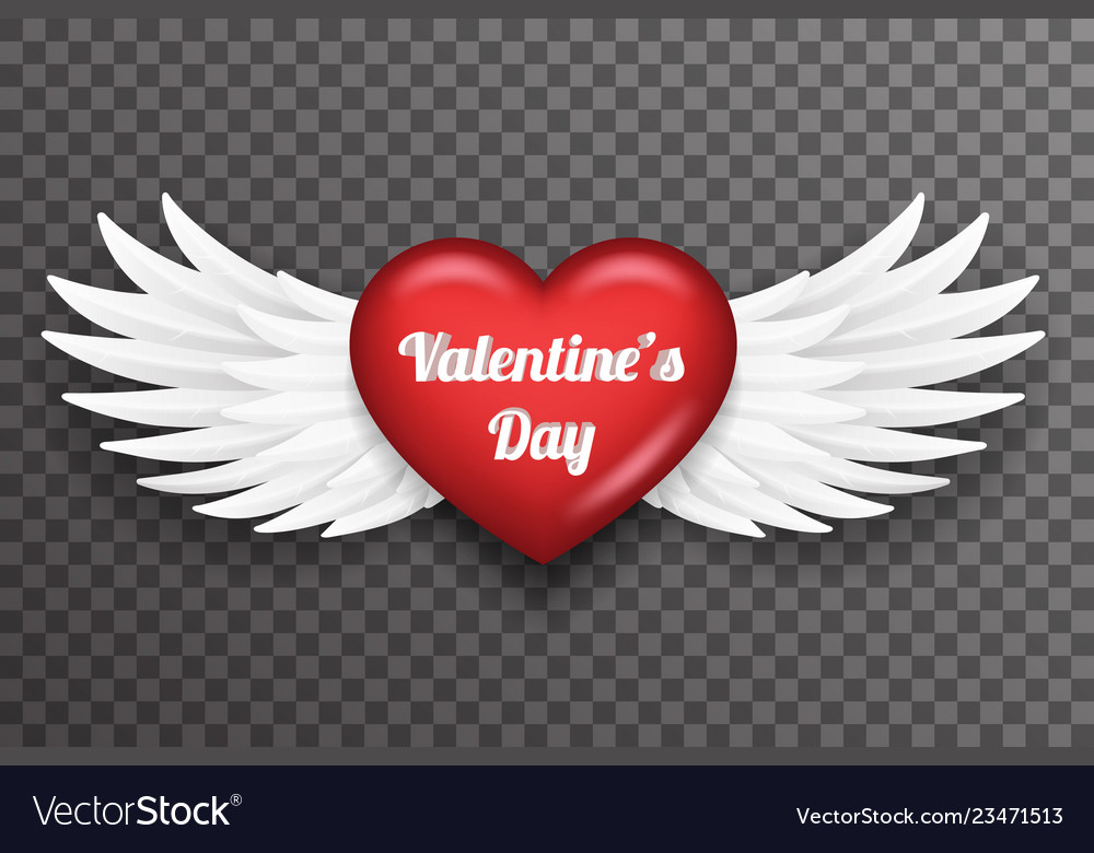 Valentine day heart white bird angel fly wings 3d