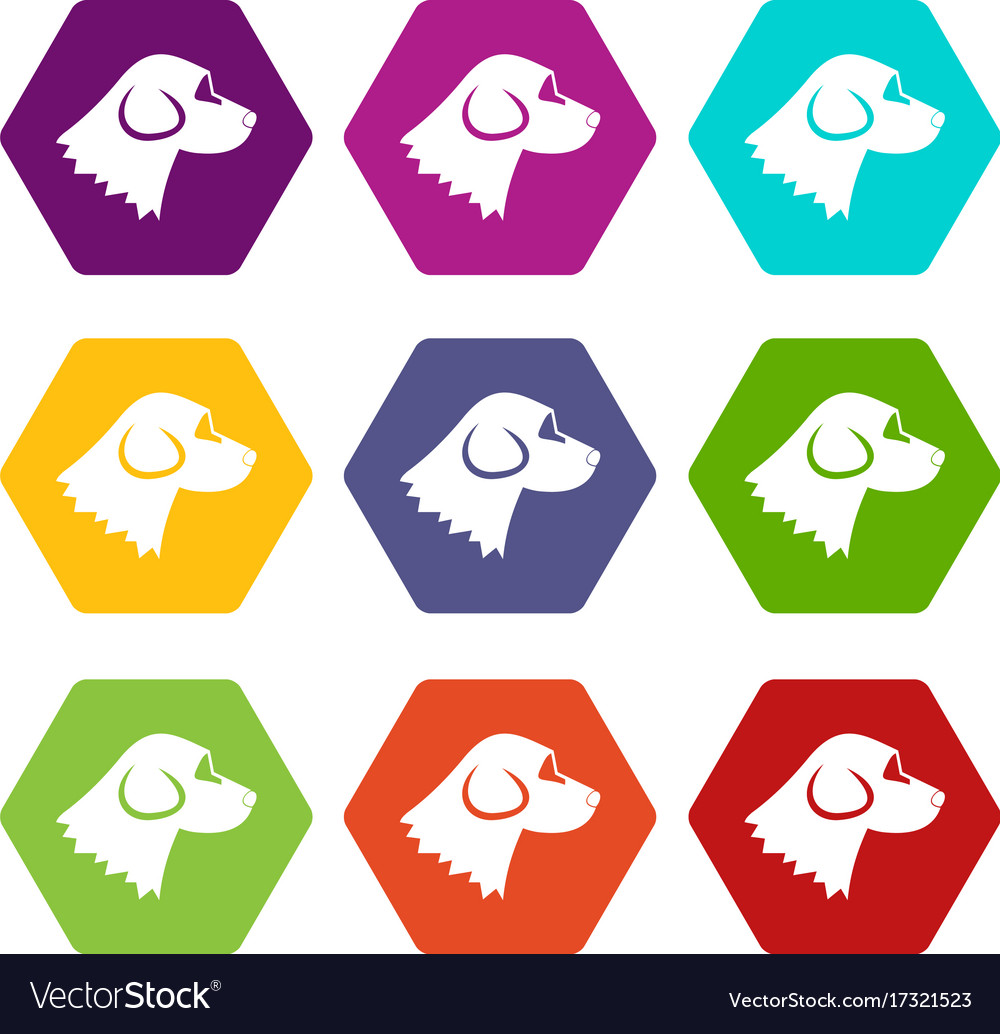 Beagle dog icon set color hexahedron vector image