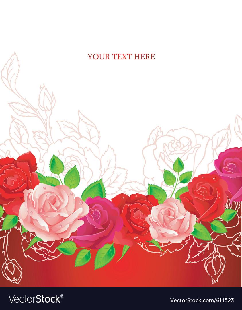 Roses backgr vector image