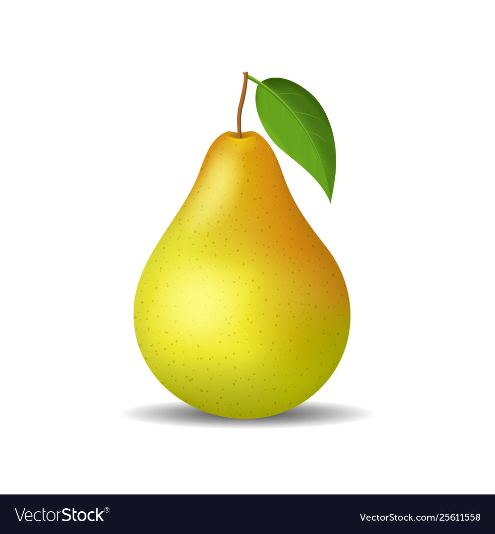 Realistic detailed 3d whole pear isolated on a