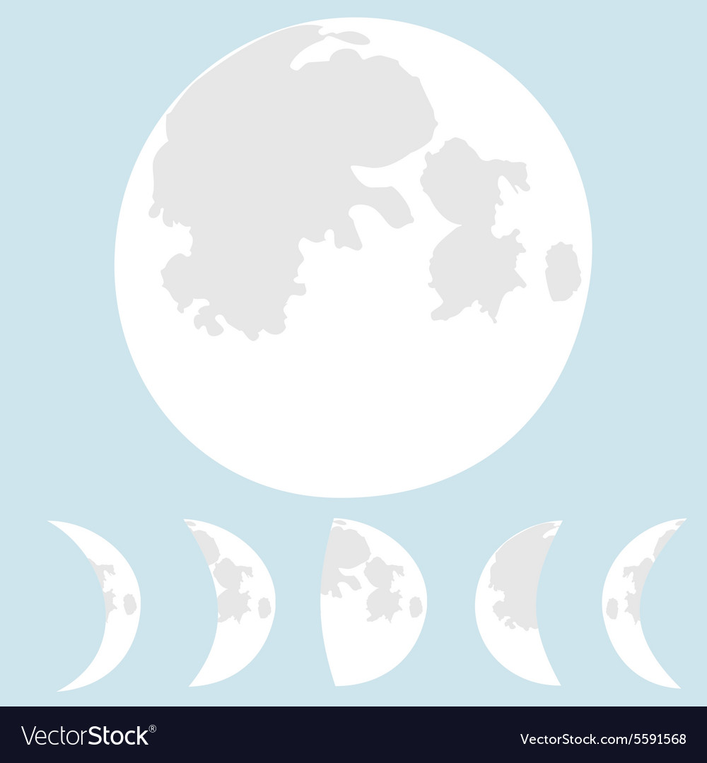 Moon phases moon vector image