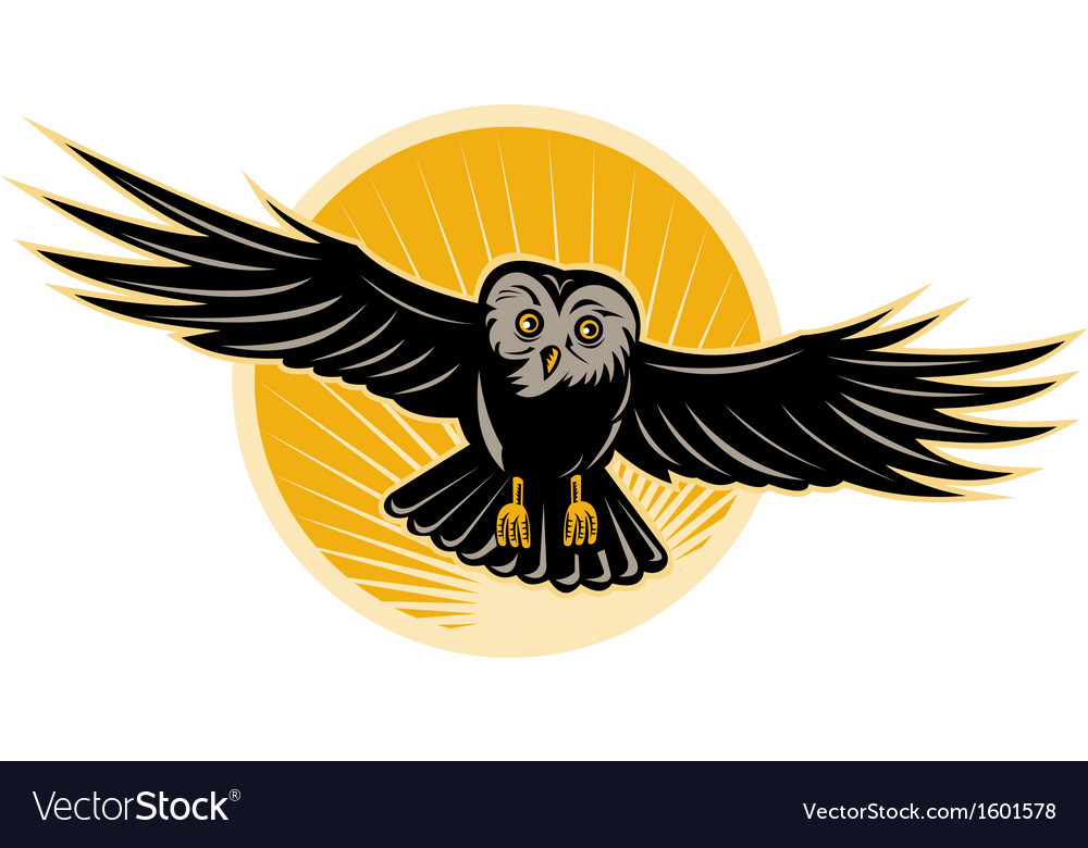 Owl swooping front