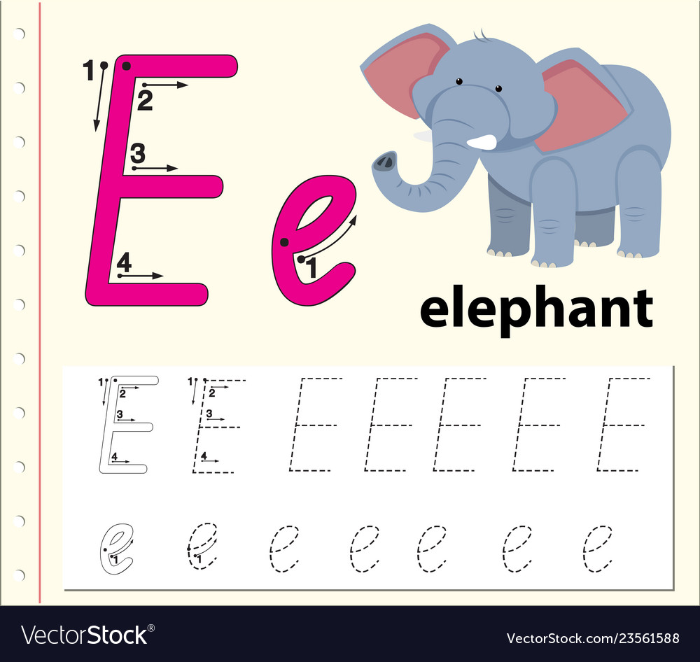 - Letter E Tracing Alphabet Worksheets Royalty Free Vector