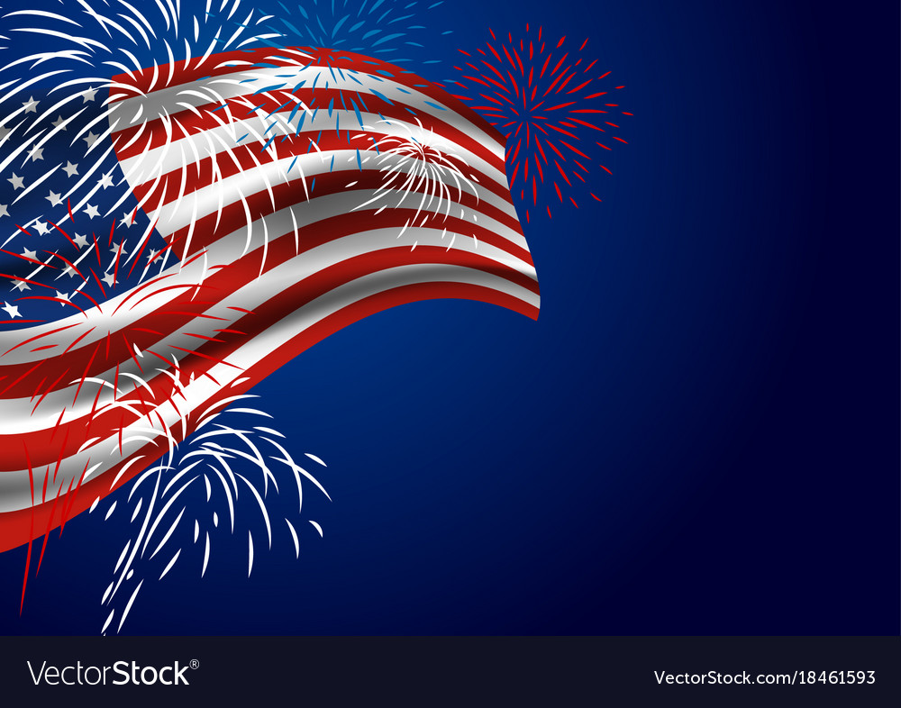 usa flag with fireworks at night vector image