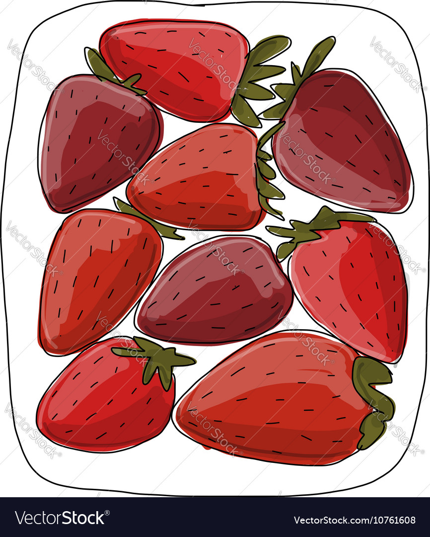 Strawberry sketch for your design