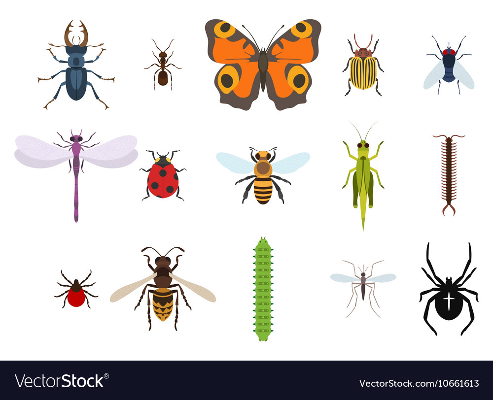 Insects and bugs pests and midge set icons