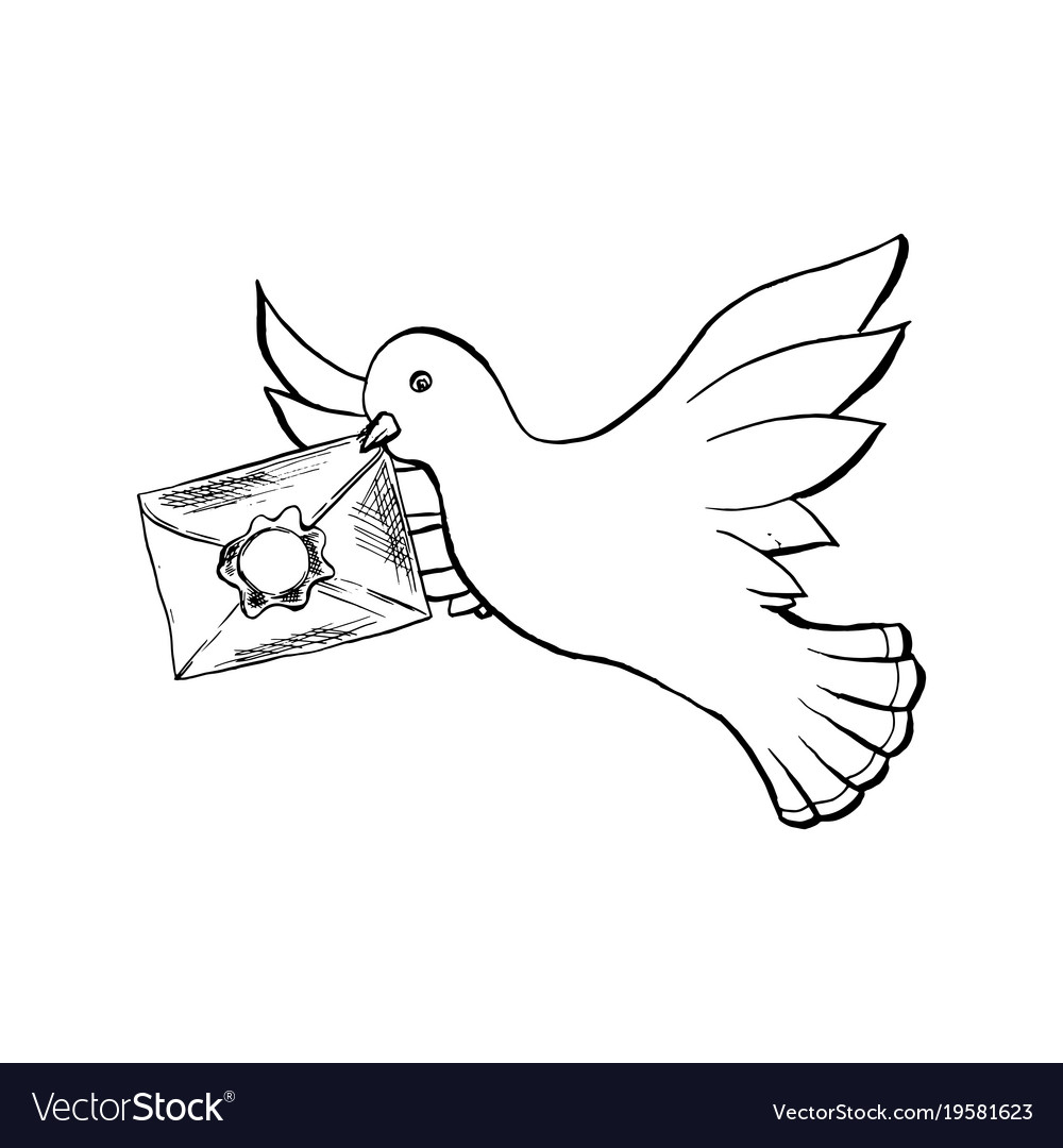 dove bird flying with envelope in sketch style vector image