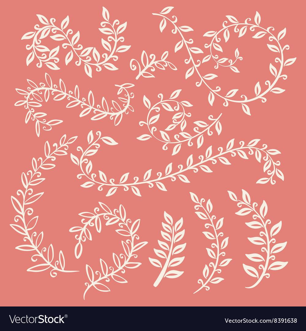 Set of leaves on pink background design elements