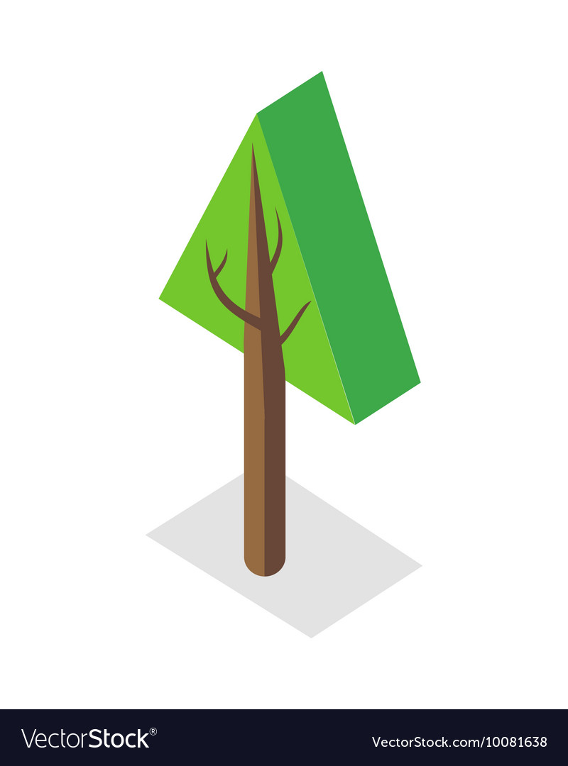 Tree in Isometric Projection