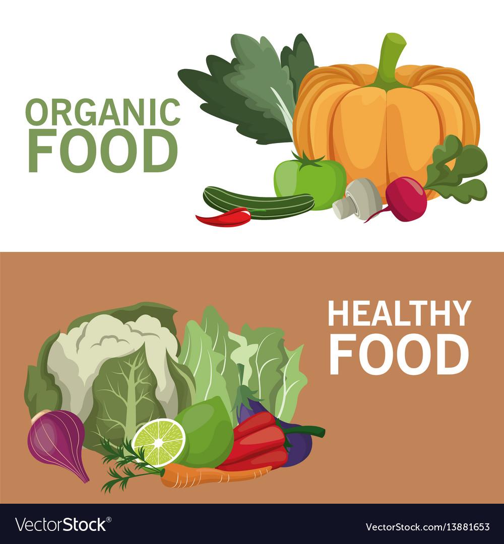 organic food healthy nutrition brochure royalty free vector
