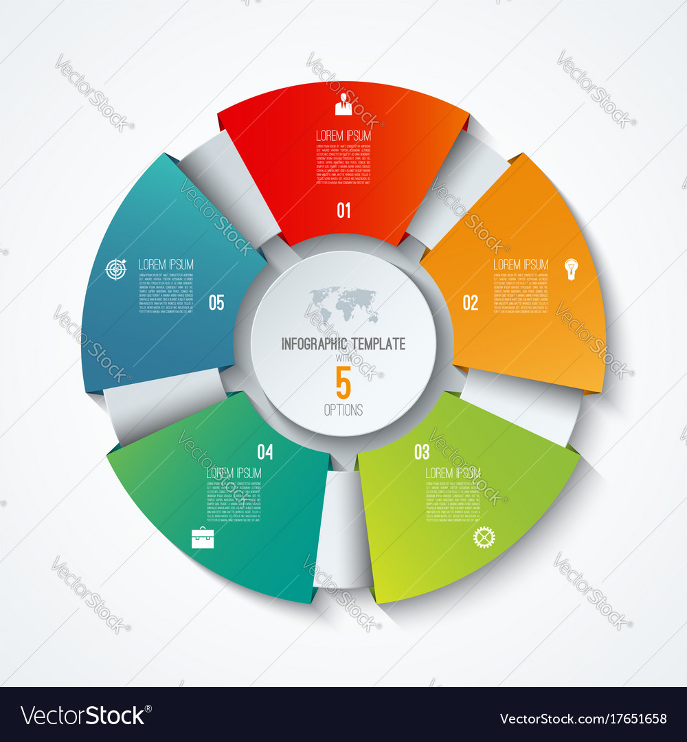 Circle infographic template with 5 options vector image