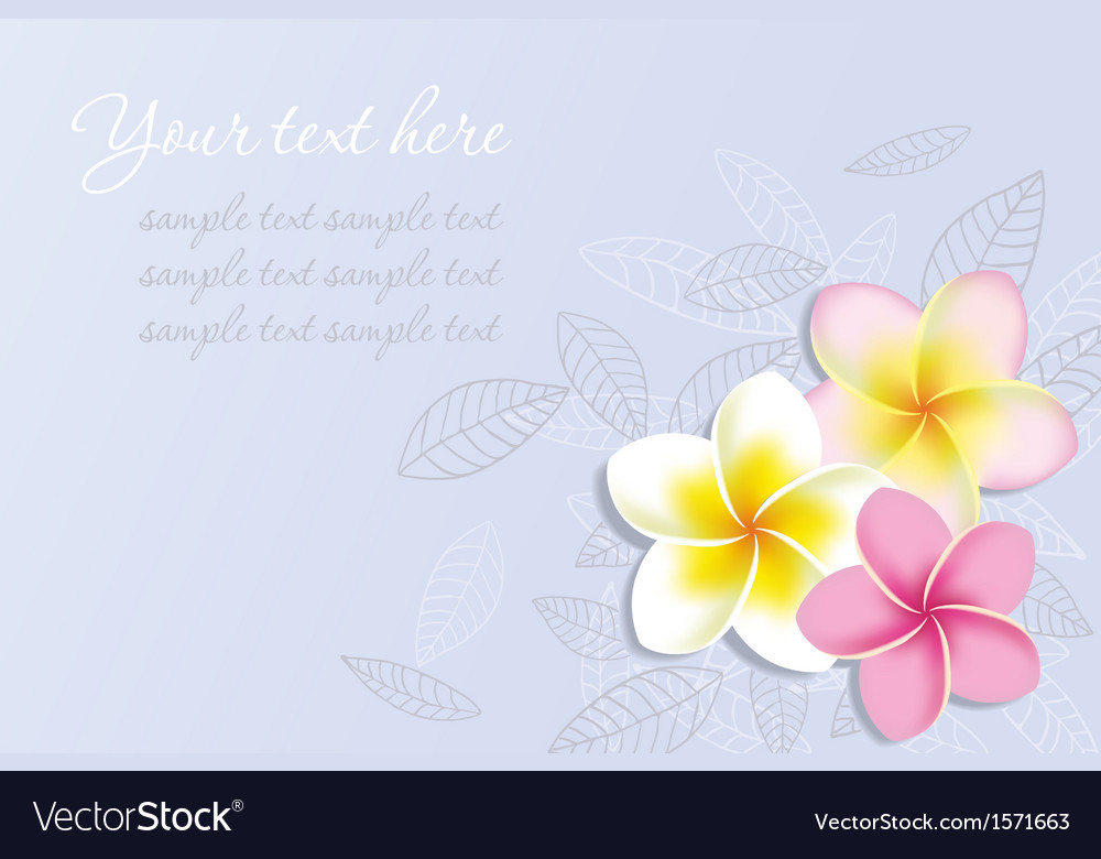 Background with Plumeria Flowers