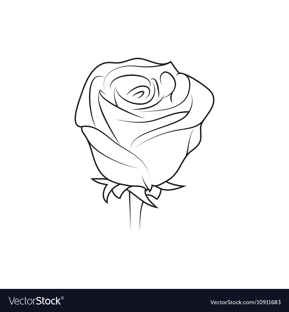 Rose flower simple black lined icon on white vector image mightylinksfo