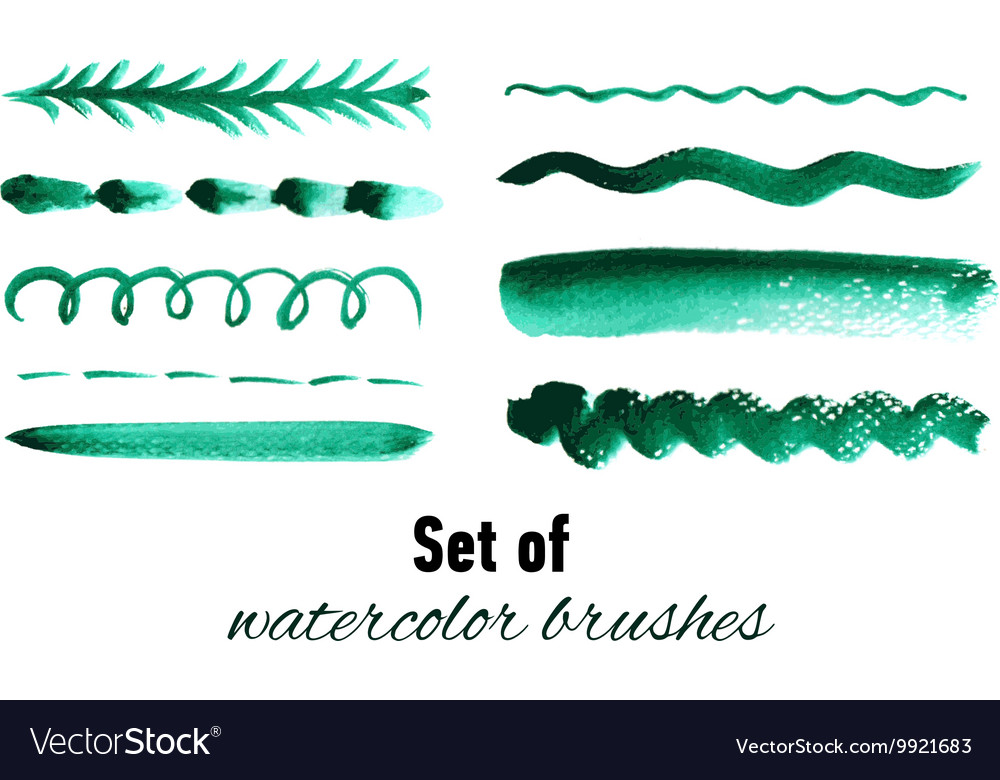 Set of green watercolor hand drawn brushes vector image