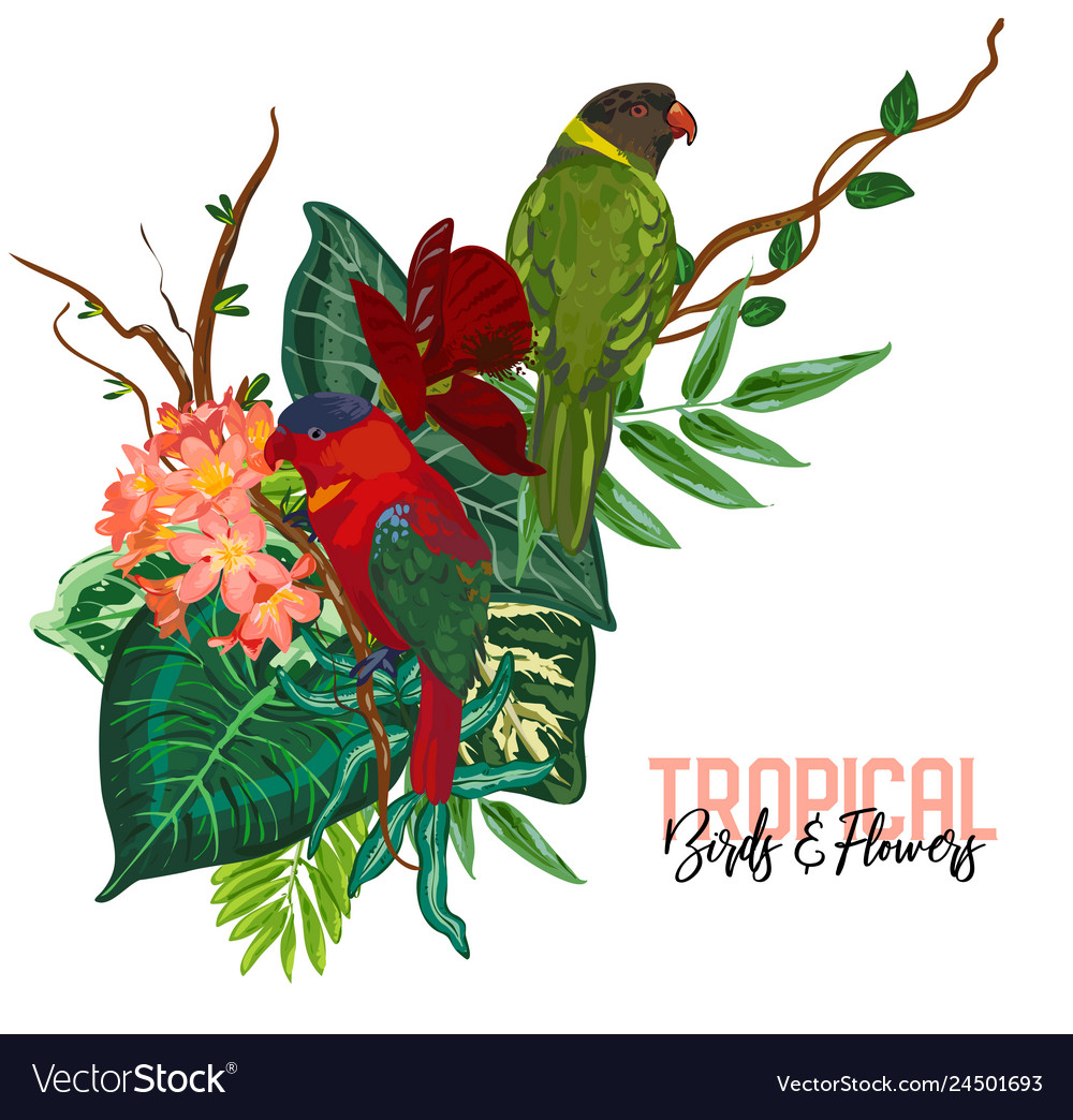 Tropical collection with exotic flowers
