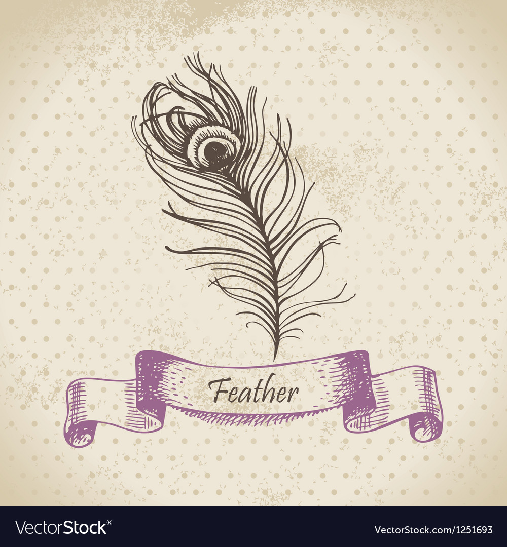 Vintage background with peacock feather