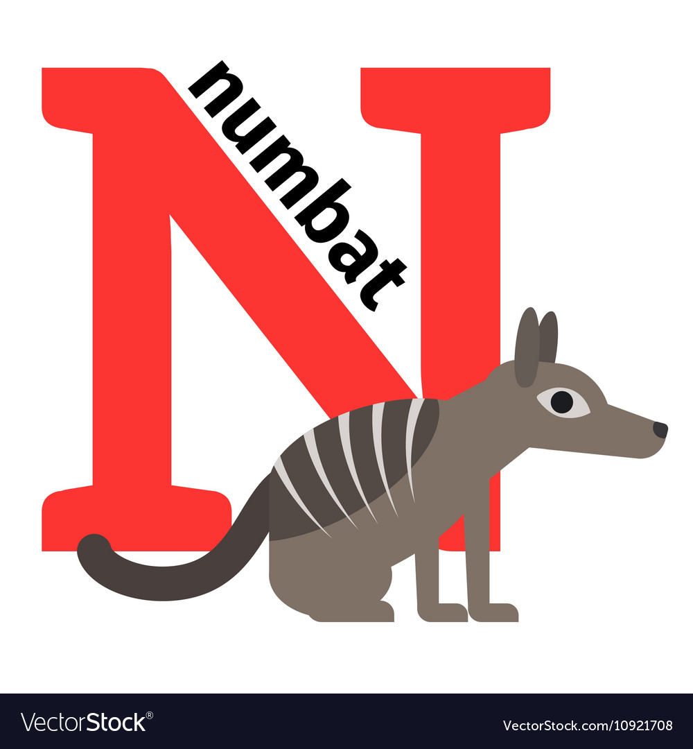 English animals zoo alphabet letter N