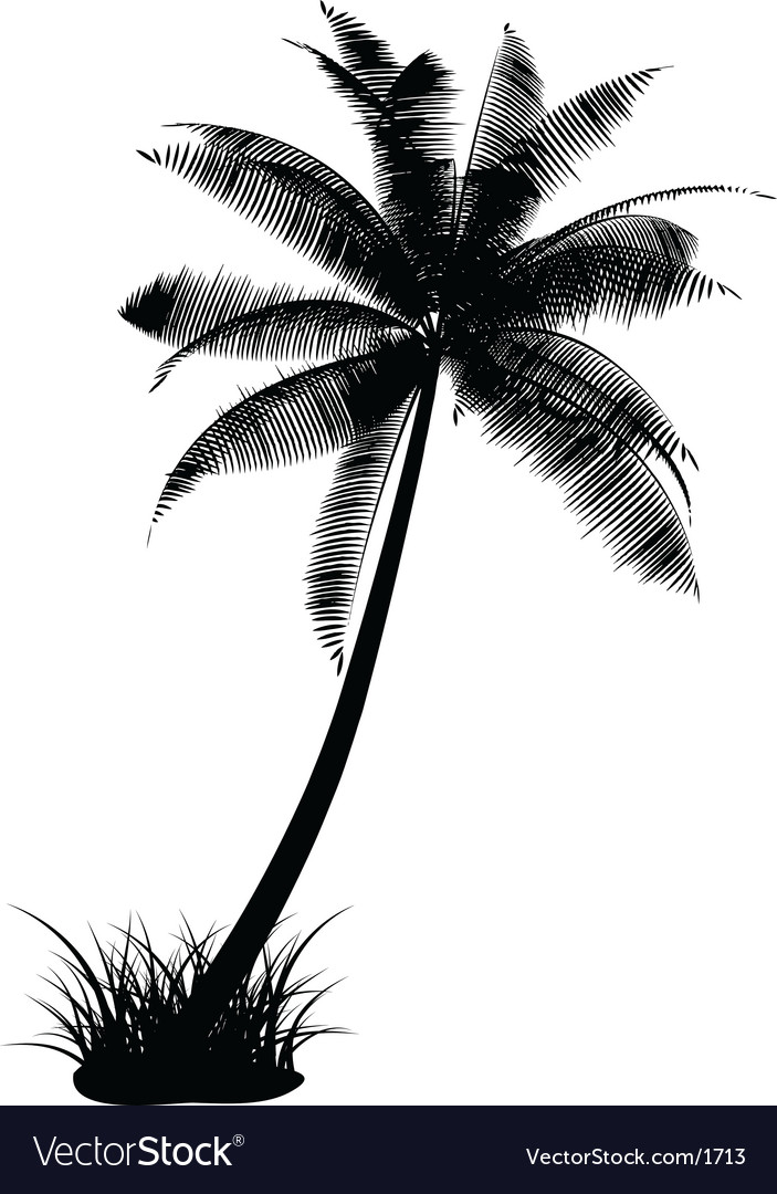 Palm tree design