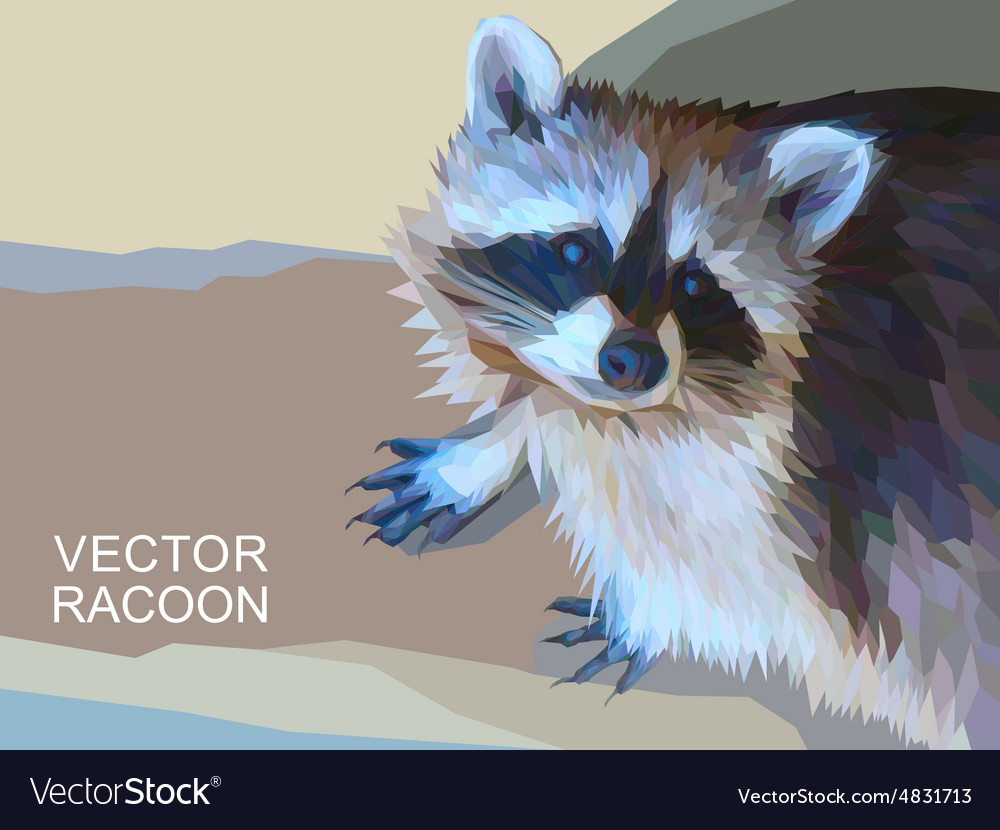 Racoon made of polygons Eps 10