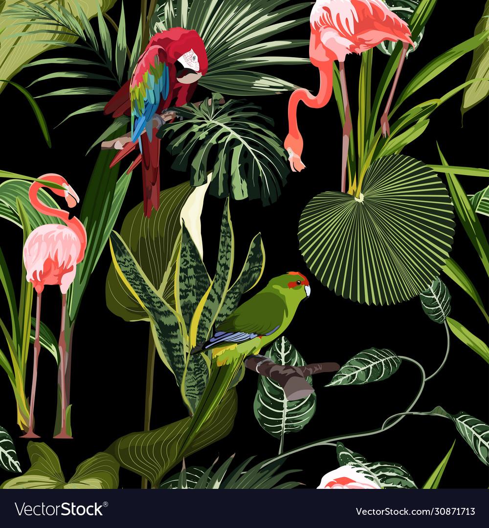 Tropical birds parrot flamingo plants leaves