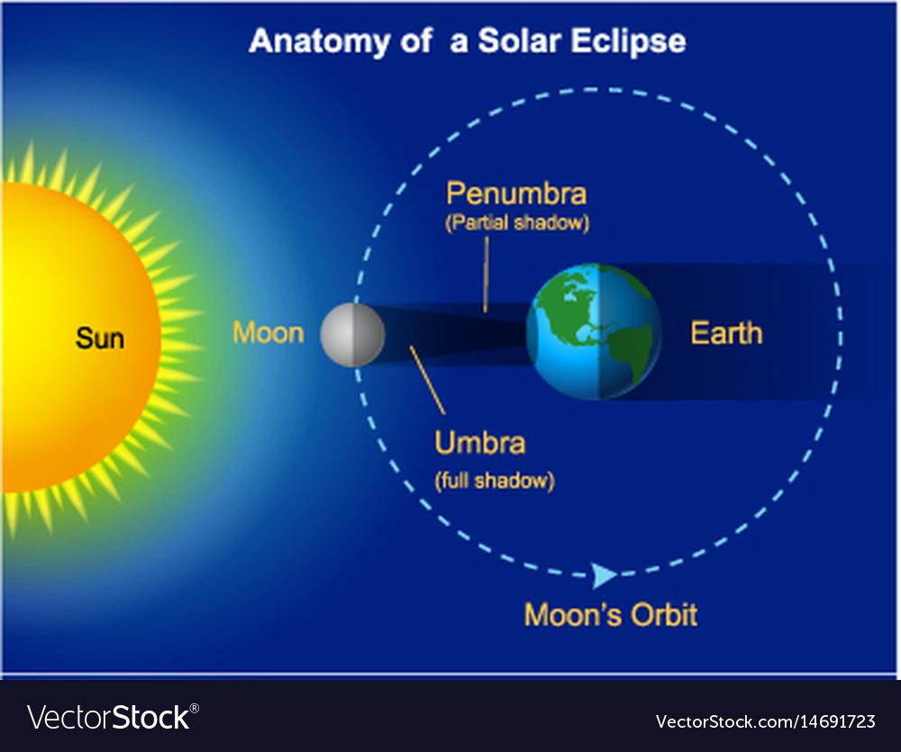 Solar Eclipse Diagram Royalty Free Vector Image