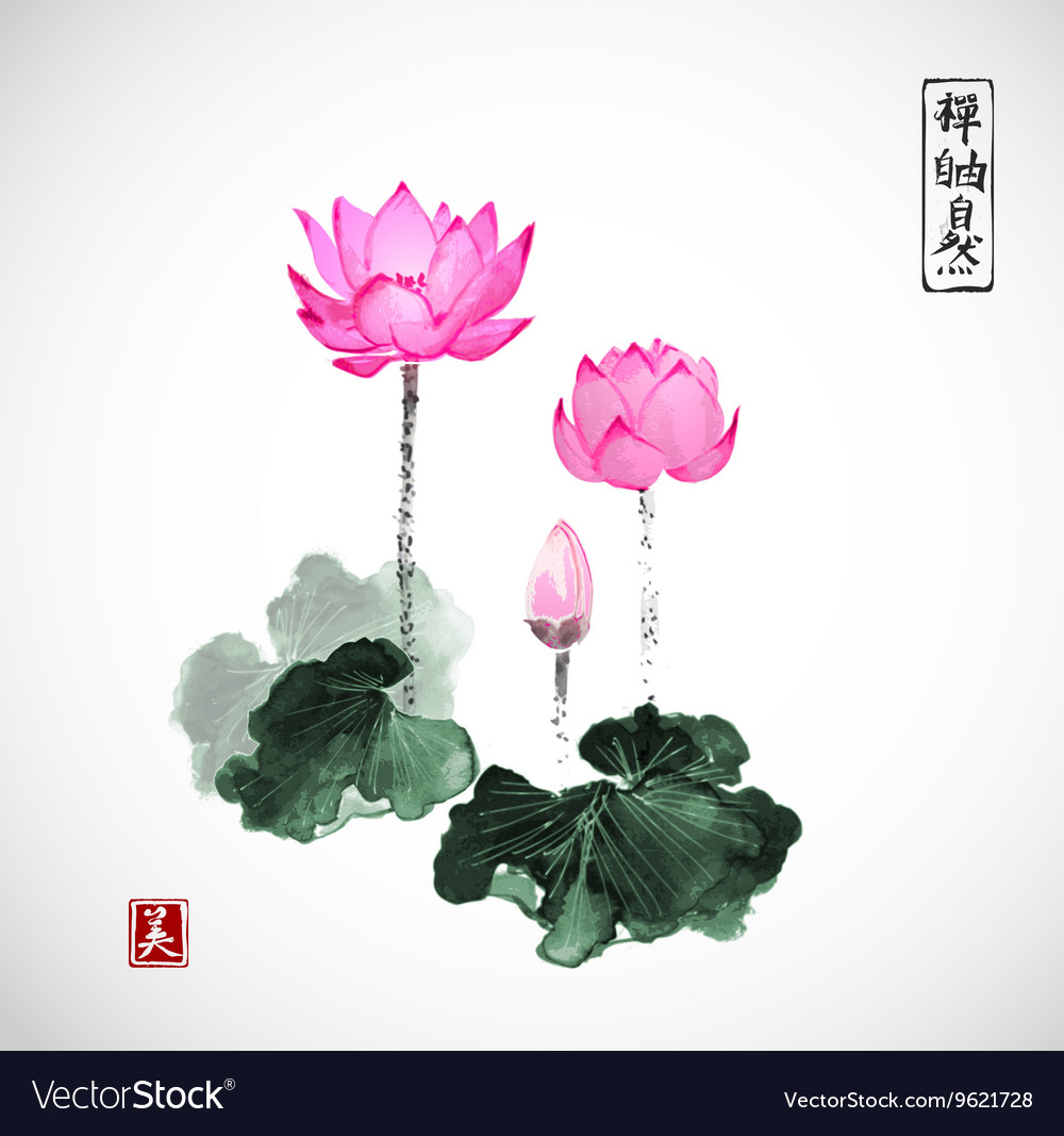 Pink lotus flowers hand drawn with ink royalty free vector pink lotus flowers hand drawn with ink vector image mightylinksfo