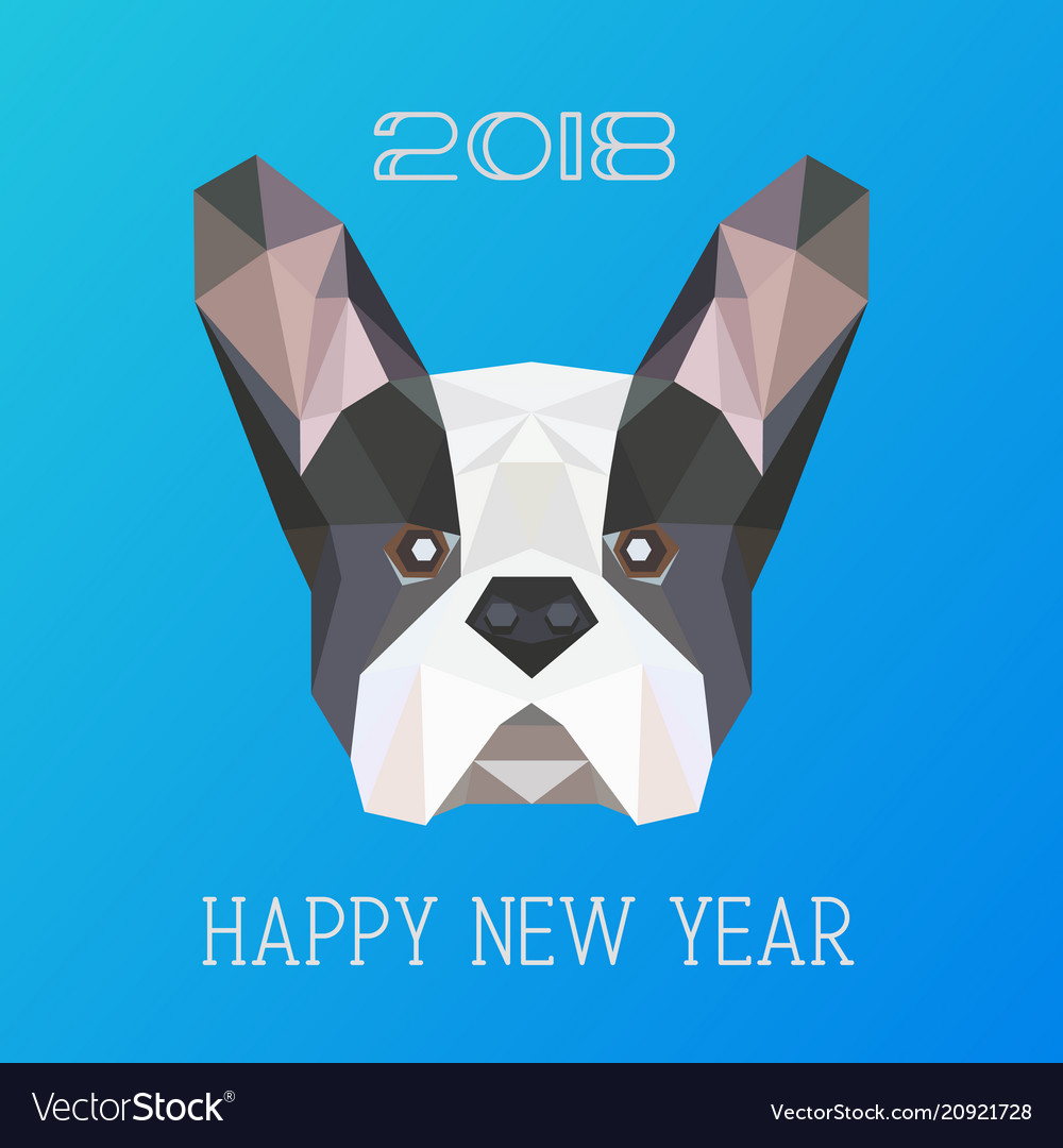 Polygonal head of french bulldog