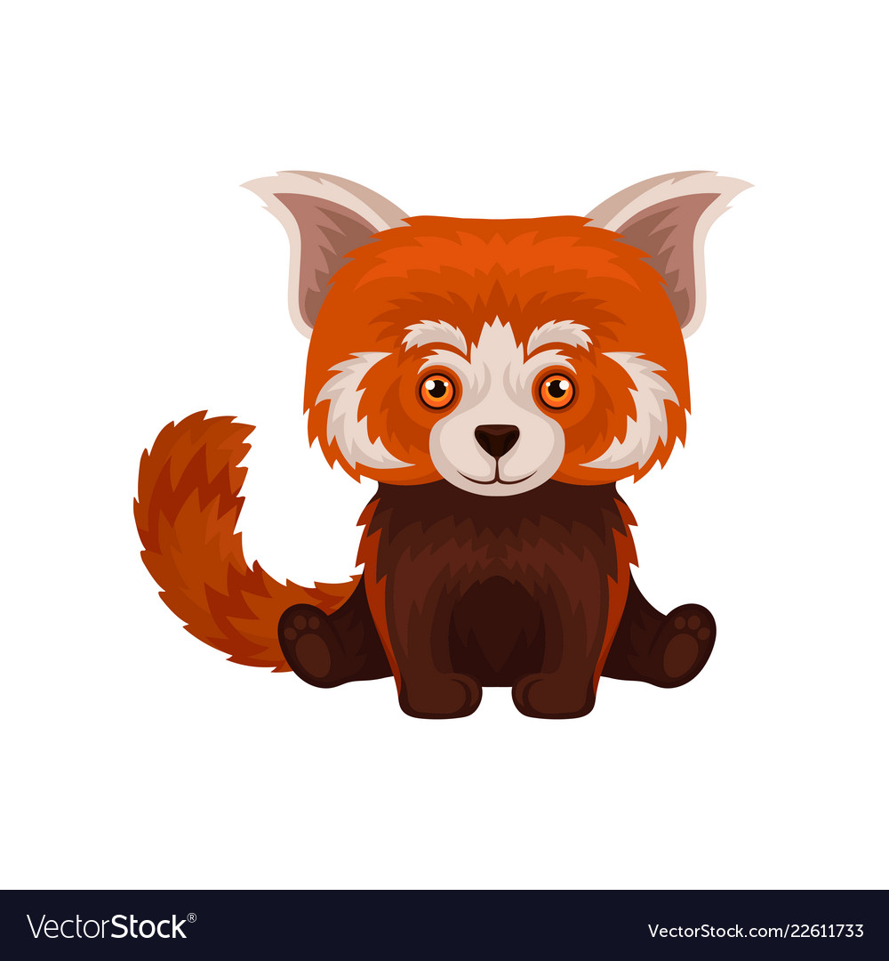 cute fluffy chinese red panda animal royalty free vector