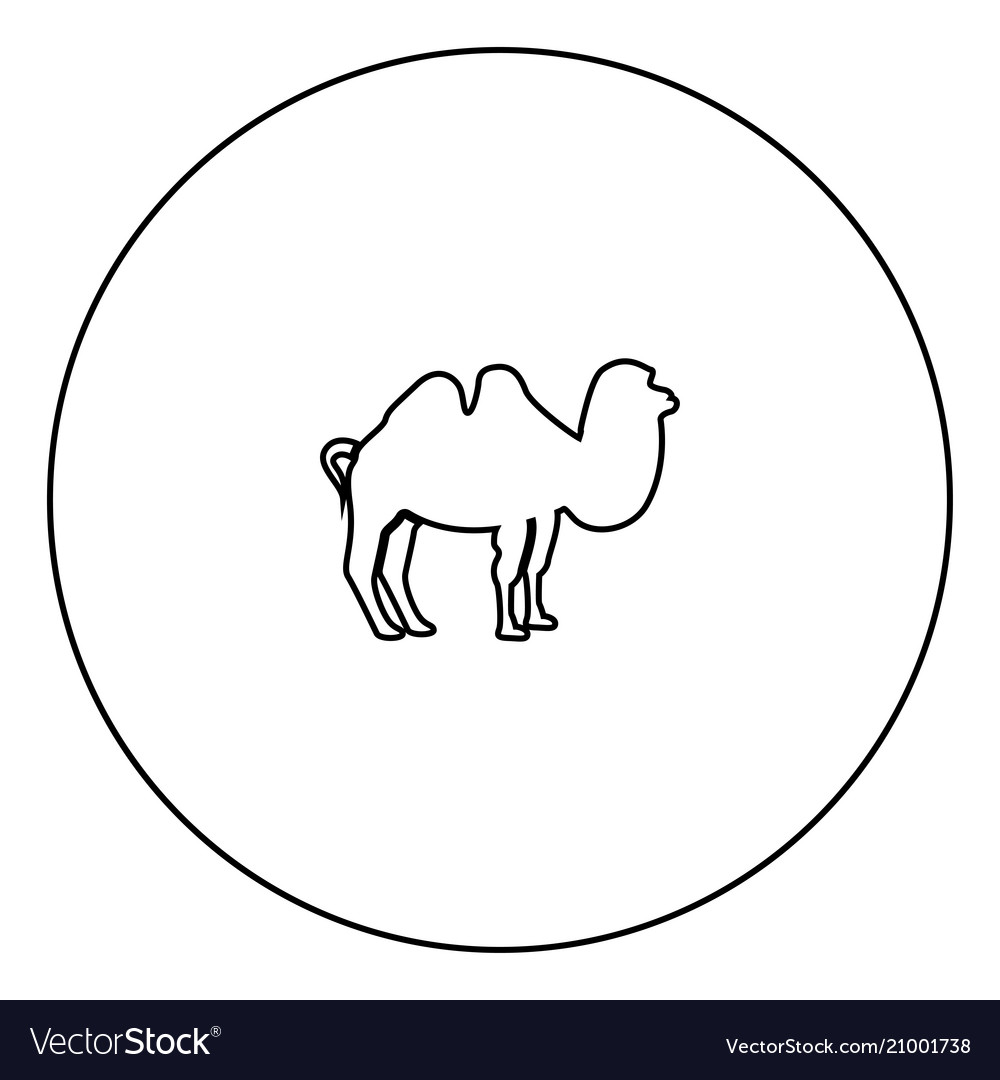 Camel black icon in circle outline