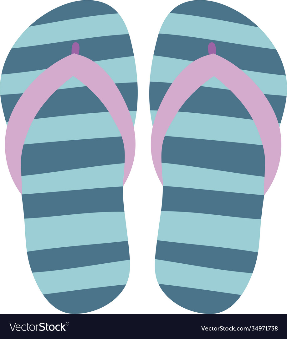 Flip flops isolate on a white background slippers
