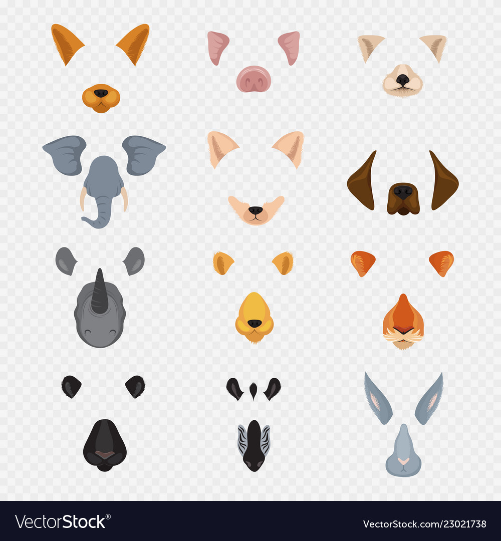 Video mobile chat animal faces cartoon animals