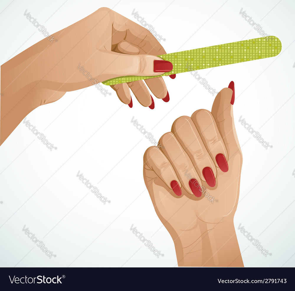 Woman hands One hand is holding a nail file vector image