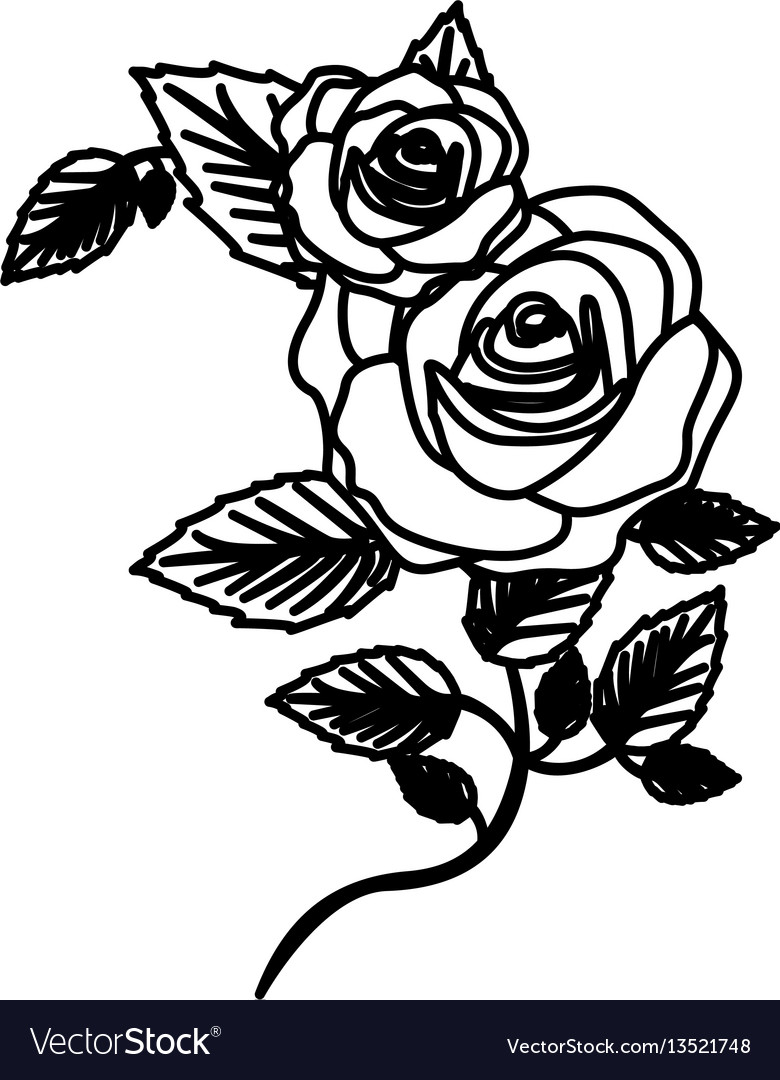 Figure roses with squere petals and leaves icon