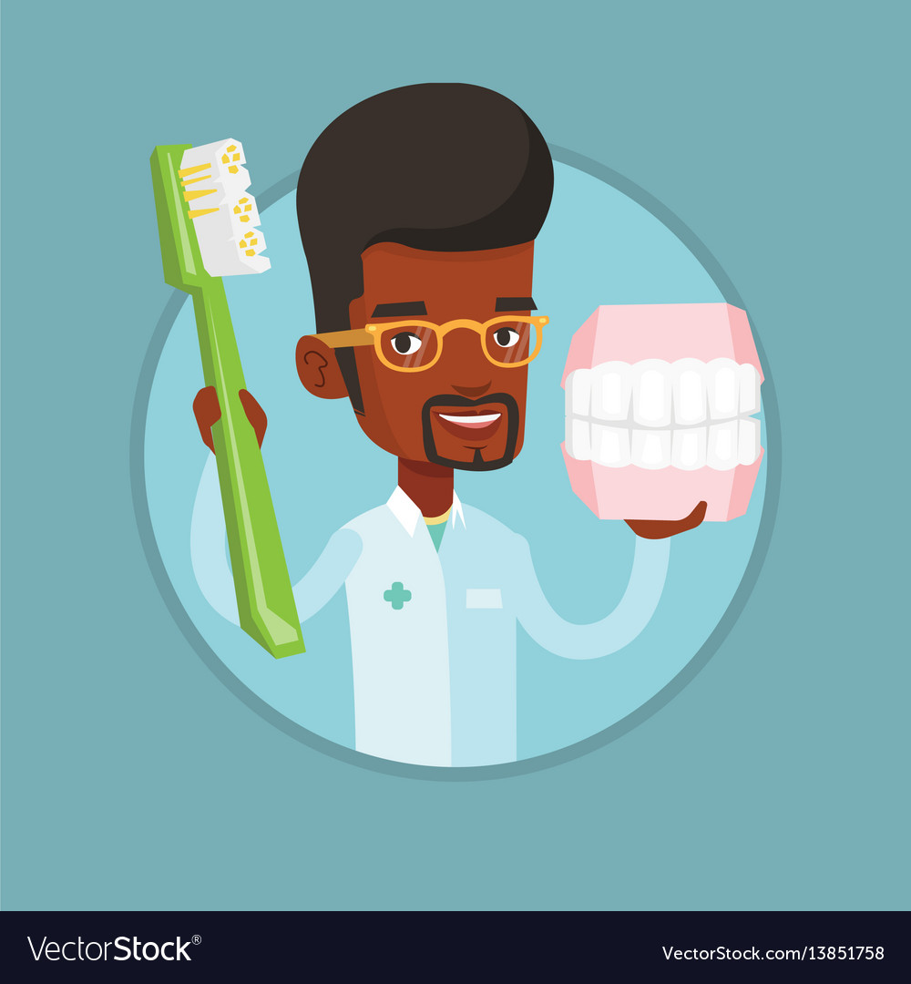 Dentist with dental jaw model and toothbrush