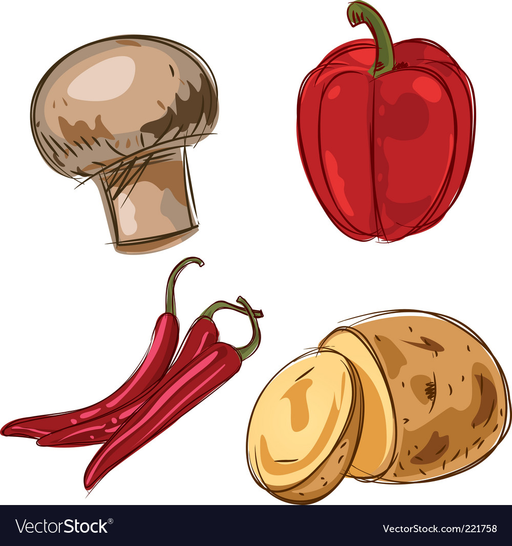 Set of ingredients vector image