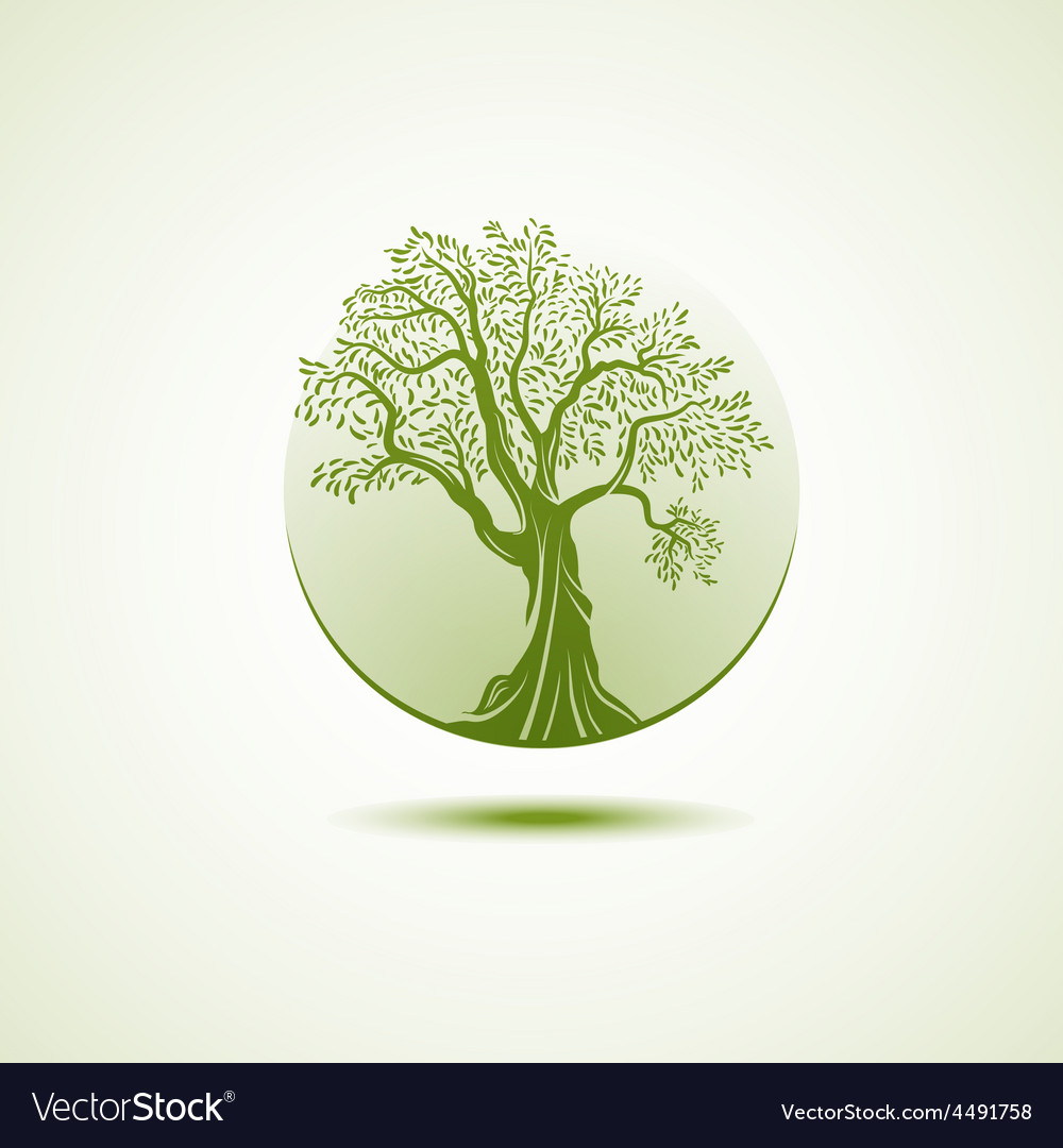 Tree logo template growing business concept vector image accmission Gallery