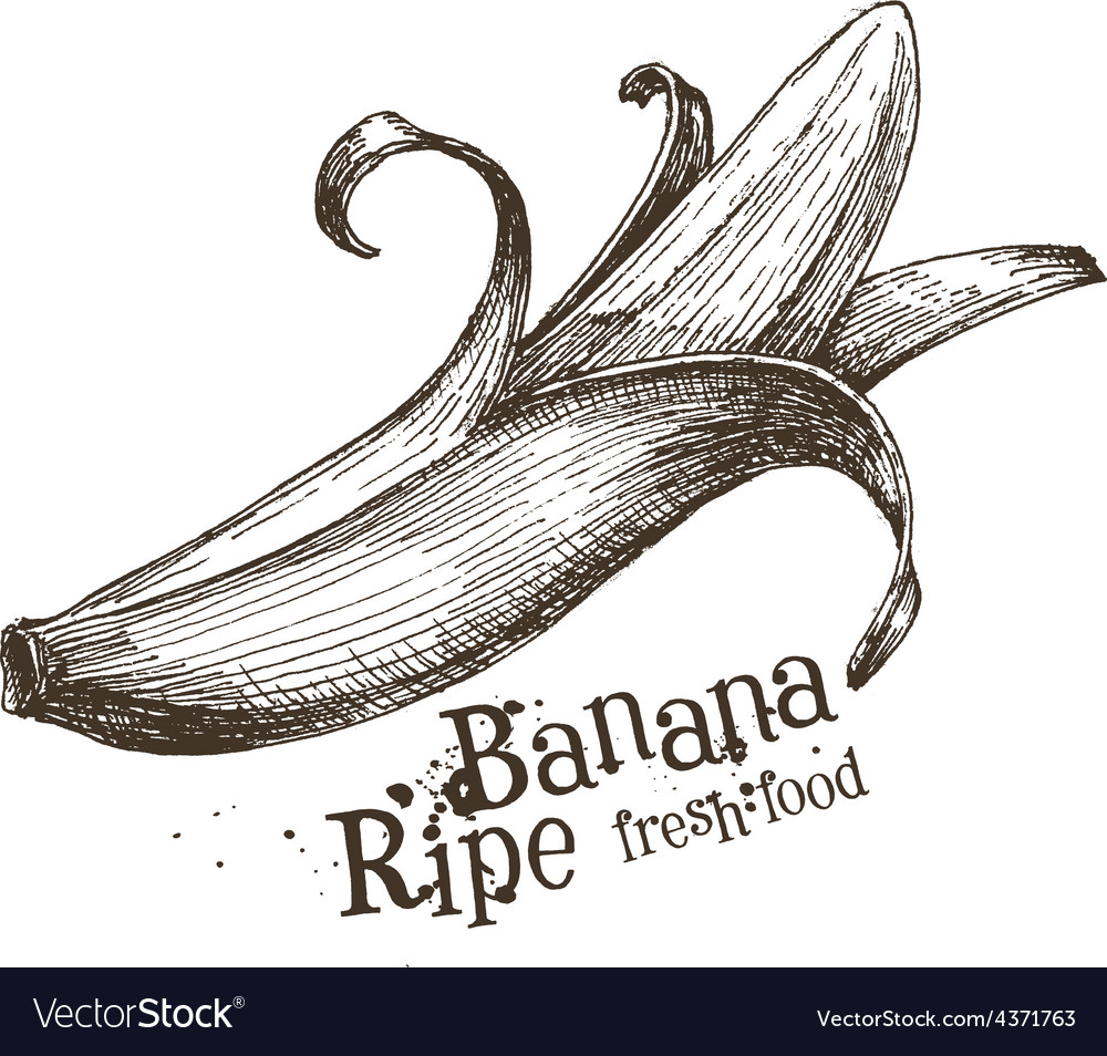 Banana logo design template fruit or food