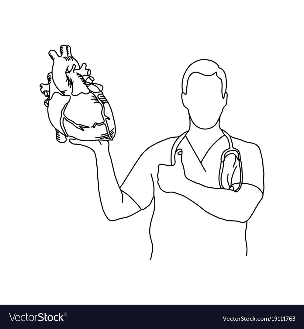 Male doctor holding a human heart