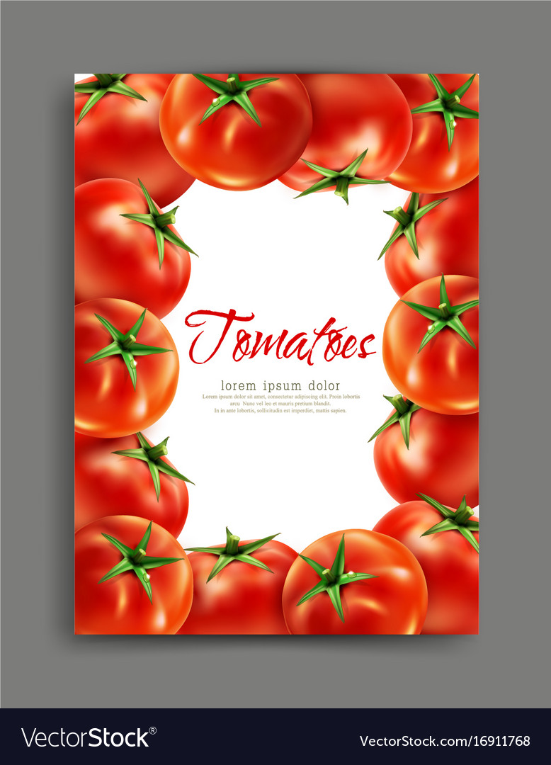 Lliustration with realistic tomatoes isolated