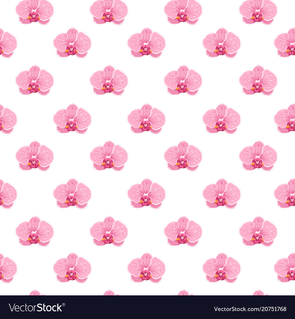 Pink purple exotic orchid flower seamless pattern vector image
