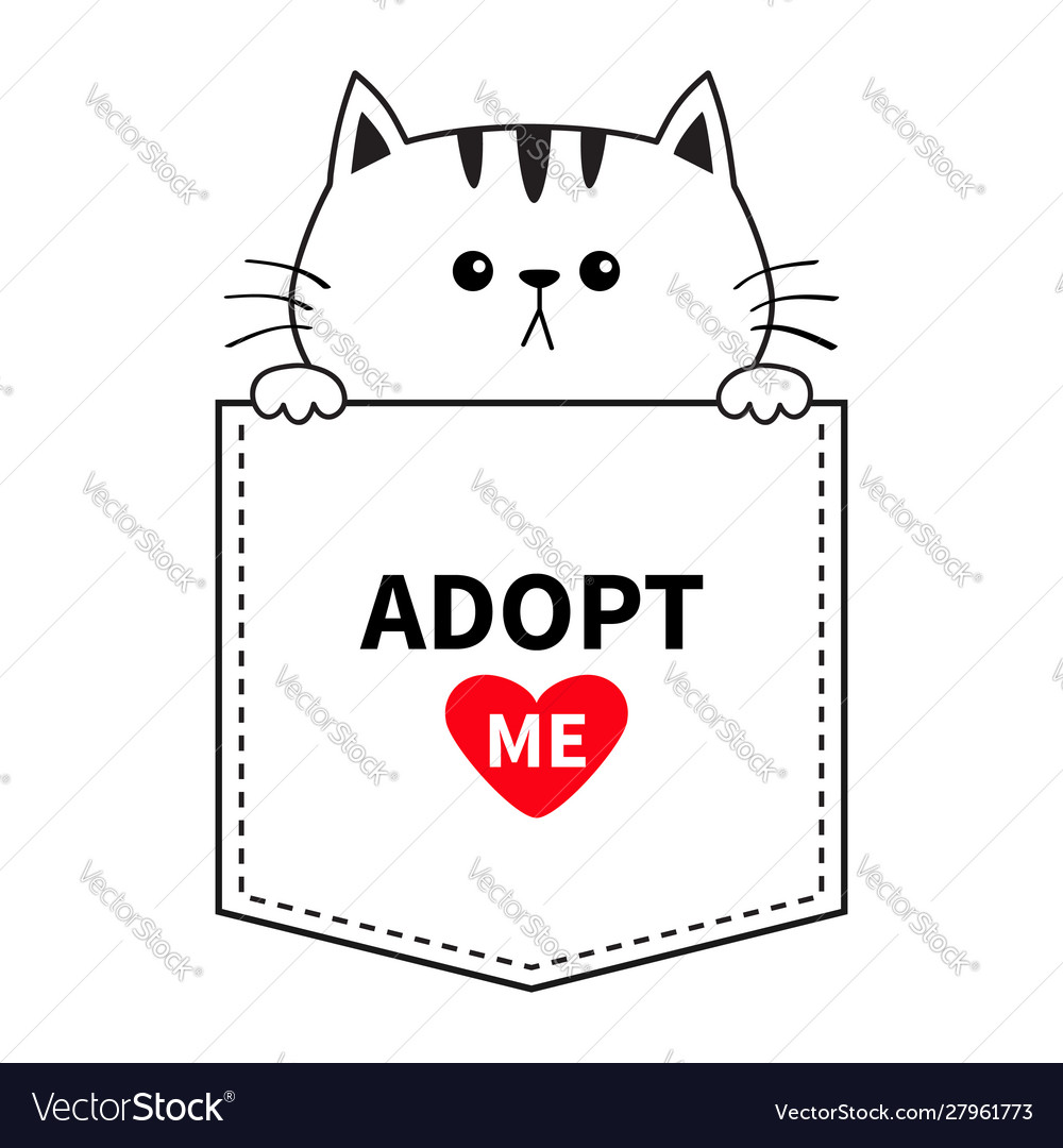 Adopt me cute cat in pocket holding hands