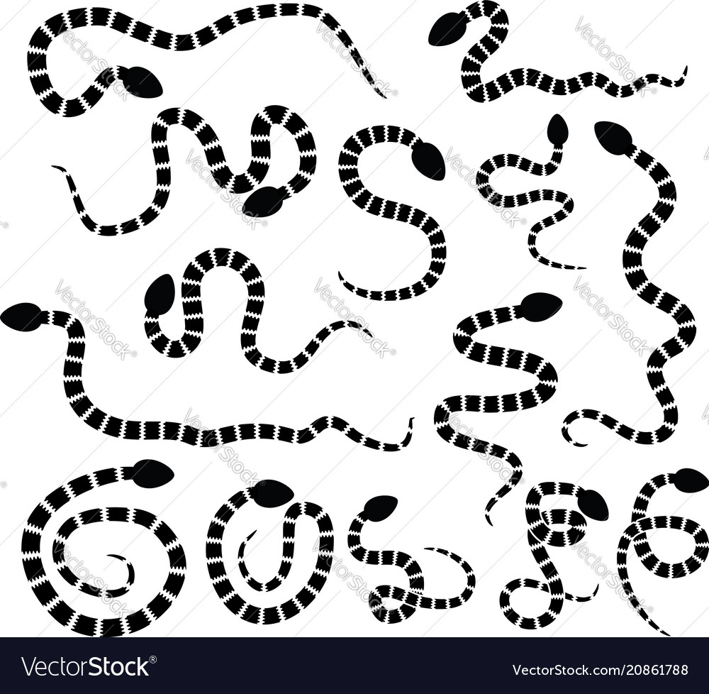 Set of snake silhouette icons