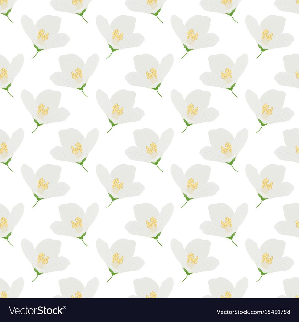 White jasmine flowers seamless pattern for vector image izmirmasajfo