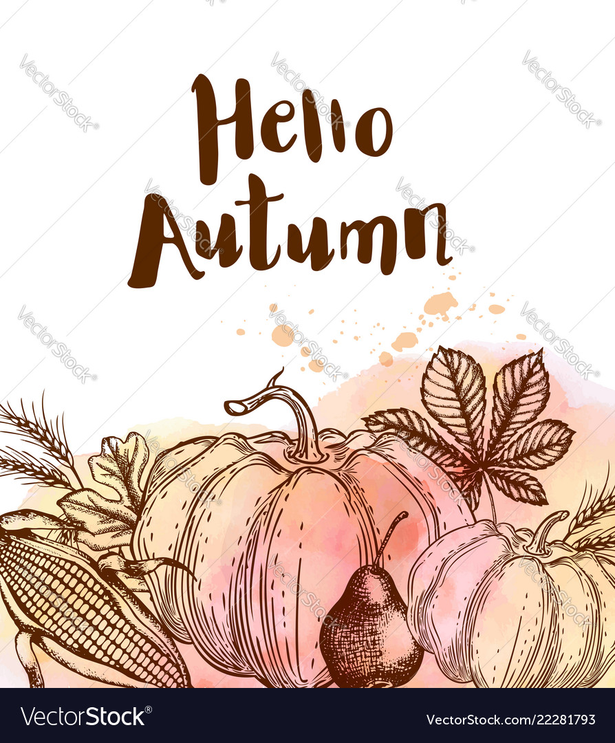 Autumn background with ripe pumpkins