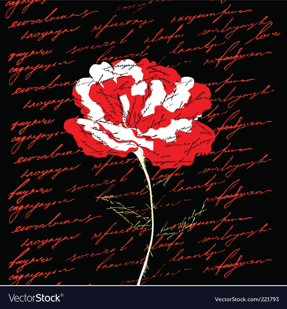 Red Flower On Black Background Royalty Free Vector Image