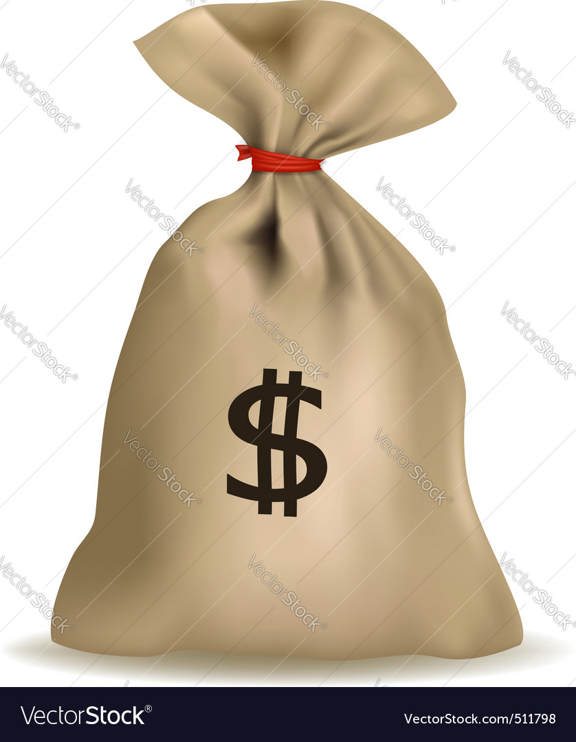 Sack of money vector image