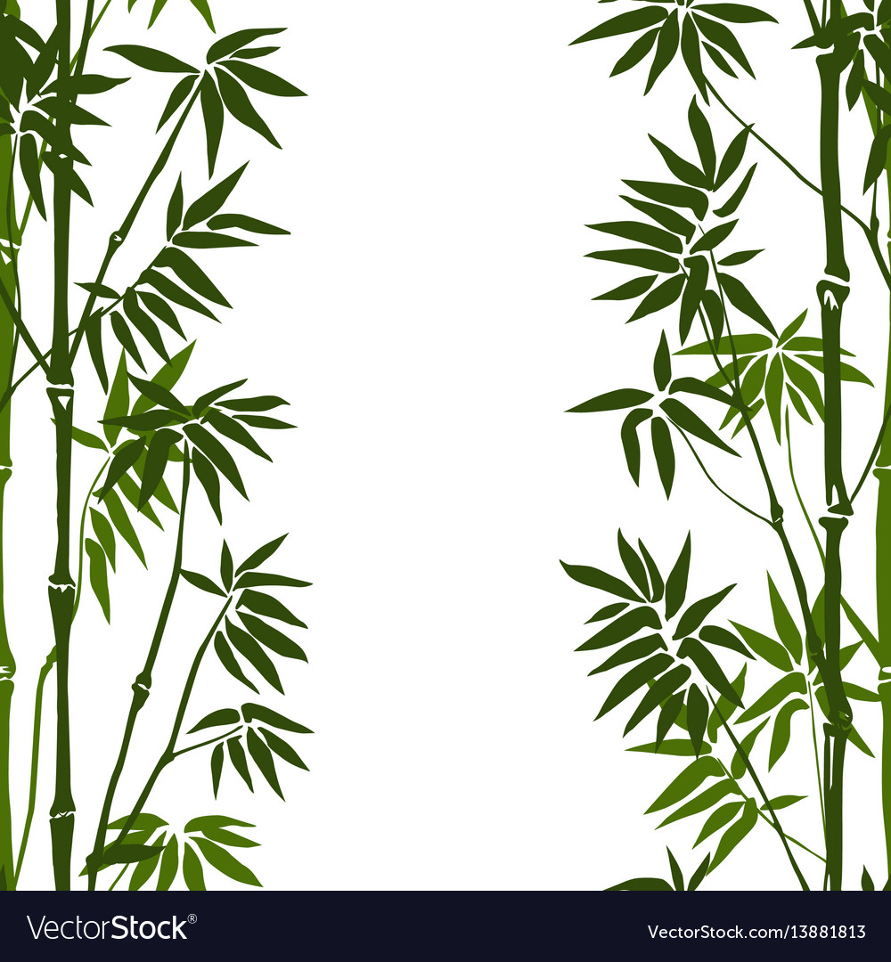 Bamboo seamless vertical pattern vector image