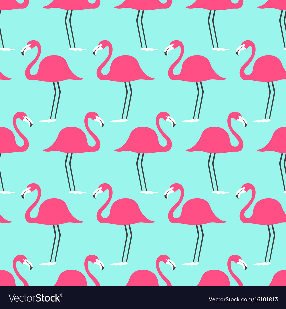 Tropical birds flamingo on a turquoise background