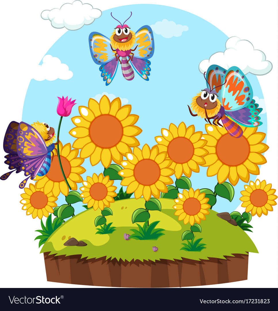 Butterflies Flying Around Flower Garden Vector Image