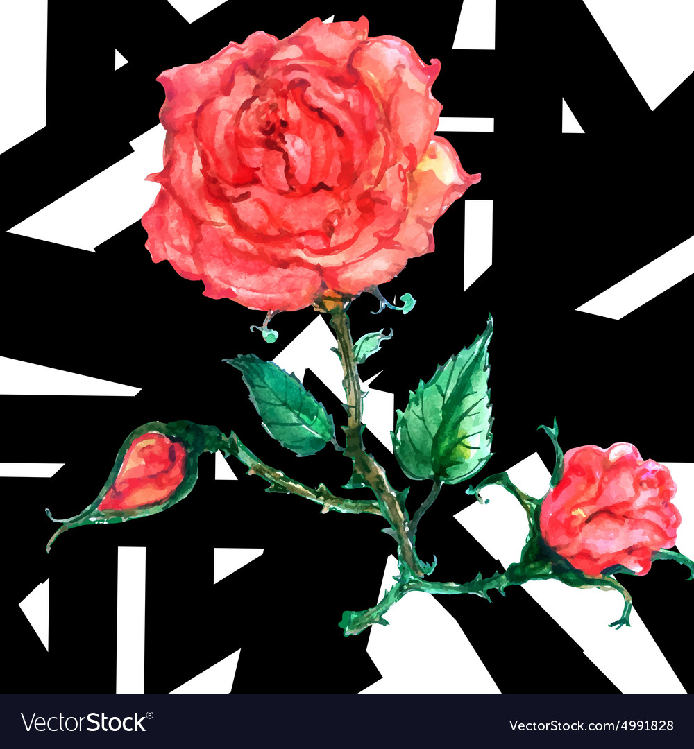 Seamless flower red roses pattern vector image